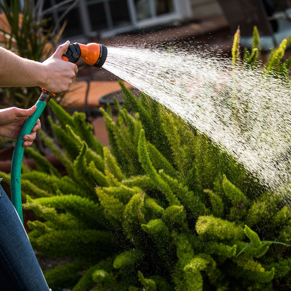 Person using handheld hose to water plants